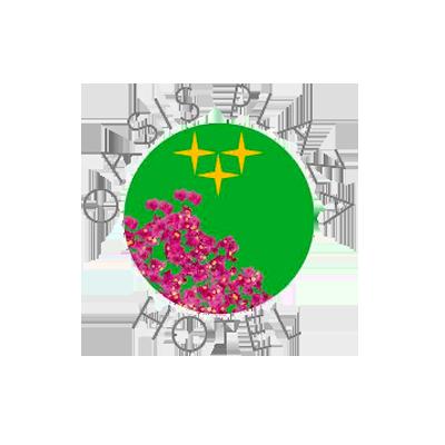 hotel oasis plaza logo